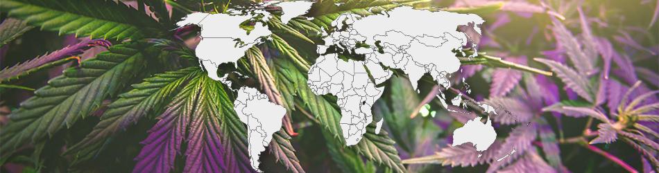 Де легалізована марихуана?